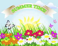 Summer banner. Stock Images
