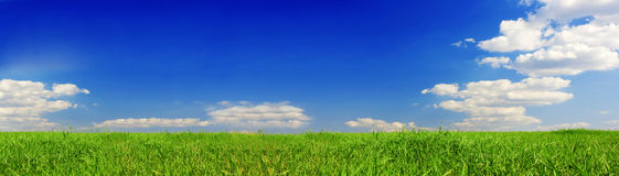 Free Summer Banner Royalty Free Stock Photography - 5972427