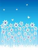 Summer banner. Summer blue banner, vector illustration Stock Photos