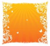 Summer banner. Summer orange banner, vector illustration Stock Photos