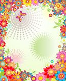 Summer banner with colorful flowers. Summery banner with colorful flowers Stock Photo
