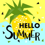 Summer banner with fruit, place for text. Trendy seasonal vector Royalty Free Stock Image