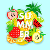 Summer banner with fruit, place for text, vector Royalty Free Stock Photography