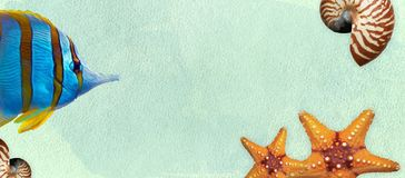 Summer banner with oil paint and watercolor brushes. Seashell, fishes, starfish on a marine background with text space. royalty free stock image