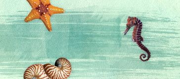 Summer banner with oil paint and watercolor brushes. Seashell, seahorse, starfish on a marine background with text space. stock illustration