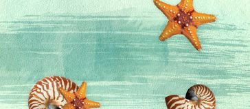 Summer banner with oil paint and watercolor brushes. Seashell, starfish on a marine background with text space. stock photos