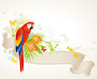 Summer banner with parrot Stock Photos