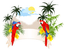 Summer banner with parrots stock illustration