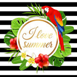 Summer banner with red parrot Stock Photography