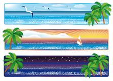 Summer banner with sea and palm, . Royalty Free Stock Images