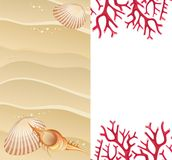 Summer banner with seashells Stock Photography