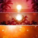Summer Banner Set Royalty Free Stock Photography