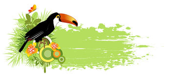 Summer banner with tropical bird and palms Stock Images