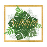 Summer banner with tropical leaves with gild frame on the white royalty free illustration