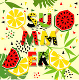 Summer banner with watermelon and lemon, place for text Royalty Free Stock Photos