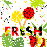 Summer banner with watermelon and lemon, vector Royalty Free Stock Photos