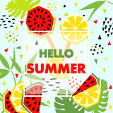 Summer banner with watermelon and lemon, vector Royalty Free Stock Image