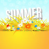 Summer banner with wheat field Royalty Free Stock Photos