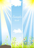 Summer banners. Set with colored flowers, growing plants, fresh wet green grass and shiny sky Royalty Free Stock Photography