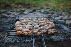 Summer barbecue with chicken. Dinner. Summer barbecue with chicken. Dinner or lunch Stock Photos