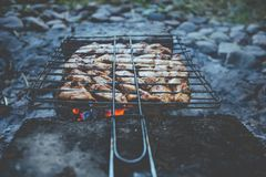 Summer barbecue with chicken. Dinner. royalty free stock photos