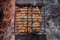 Summer barbecue with chicken. Dinner. Royalty Free Stock Images