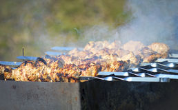 Summer barbecue outdoors. Juicy barbecue outdoors in summer Royalty Free Stock Photos