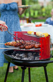 Summer barbecue party Royalty Free Stock Photos
