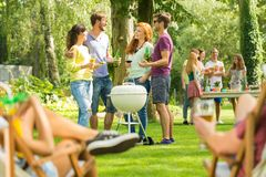 Summer barbecue party in nature royalty free stock photography