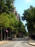 Summer in barcelona. Green trees and empty street stock image