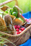Summer basket for picnic  with wine, bread, fruits and snacks Stock Photos