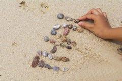 Summer beach background. Backdrop,background  ,barren  ,beach  ,beige  ,clean  ,closeup Royalty Free Stock Photos