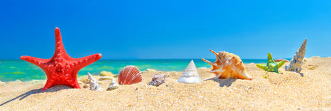 Summer beach background Stock Photography