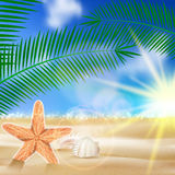 Summer beach background. Stock Photos