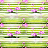 Summer Beach Background. Watercolor Seamless Pattern. Hand Painted Tropic Summer Motif with Flamingo and Stripe. Tropical Pattern. Beach Background. Watercolor royalty free illustration