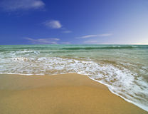 Summer Beach and Blue Skies Royalty Free Stock Photo