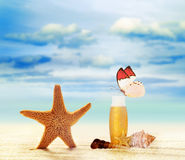 Summer beach. Butterfly and starfish Royalty Free Stock Image