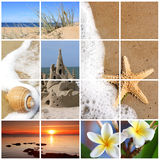 Summer Beach Collage. Collage of summer beach images.  Dreaming of vacation in the sun - sand, starfish, seashells, sandcastle, sunset, and glorious frangipani Royalty Free Stock Photos