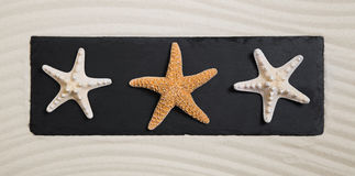 Summer beach concept: three starfishes on a black board for deco Stock Photos