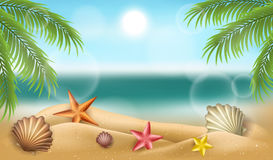 Summer beach frame with shells, starfish and palm tree. Realistic beach frame with shells, starfish on sand, and palm tree leaf. Design for summer and holiday Royalty Free Stock Photo