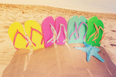 Free Summer Beach Fun Royalty Free Stock Photos - 95325068