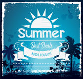 Summer beach Hawaii background Royalty Free Stock Images