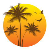 Summer Beach Icon. With palm trees and storks Stock Images