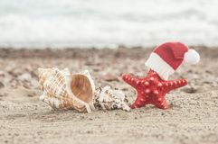 Free Summer Beach. Merry Christmas. Stock Images - 122683394