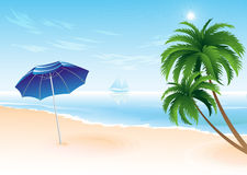 Summer beach with palm trees Royalty Free Stock Images