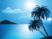 Summer beach with palm trees Royalty Free Stock Photo