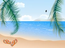 Summer beach with palms Stock Images