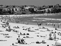 Summer on the beach. People on Bondi Beach Royalty Free Stock Images