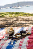 Summer beach picnic. A cheese plate picnic on the striped rug at the beach Stock Image