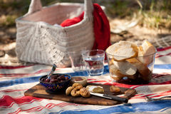 Summer beach picnic. A cheese plate picnic at the beach Royalty Free Stock Images